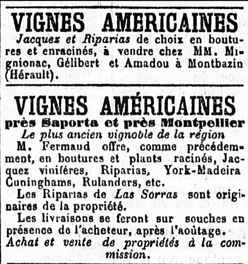 Le petit méridional, 3 janvier 1882