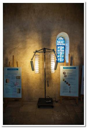 monnaies romaines à la chapelle St Pierre
