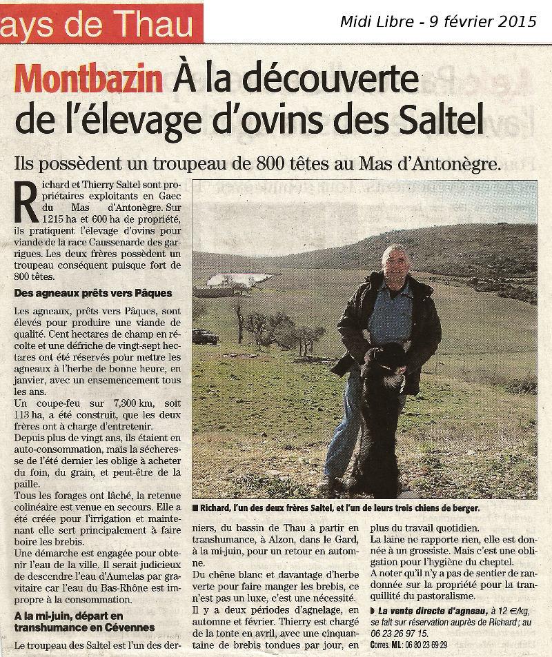 article Midi Libre 9 février 2015