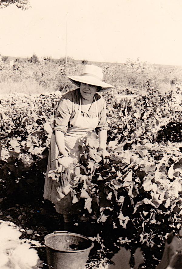 Madame Guillermo en 1967