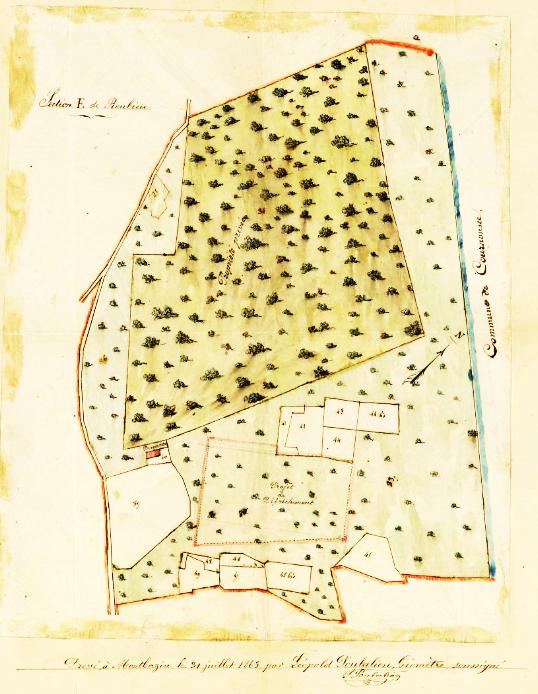 cadastre garrigue 1863