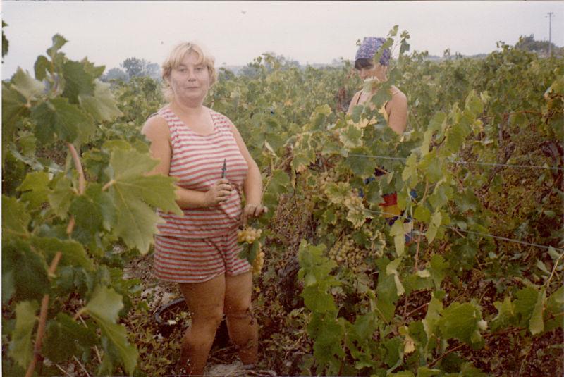 Nadine Sbarra et Genéviève Pérémarty en 1985