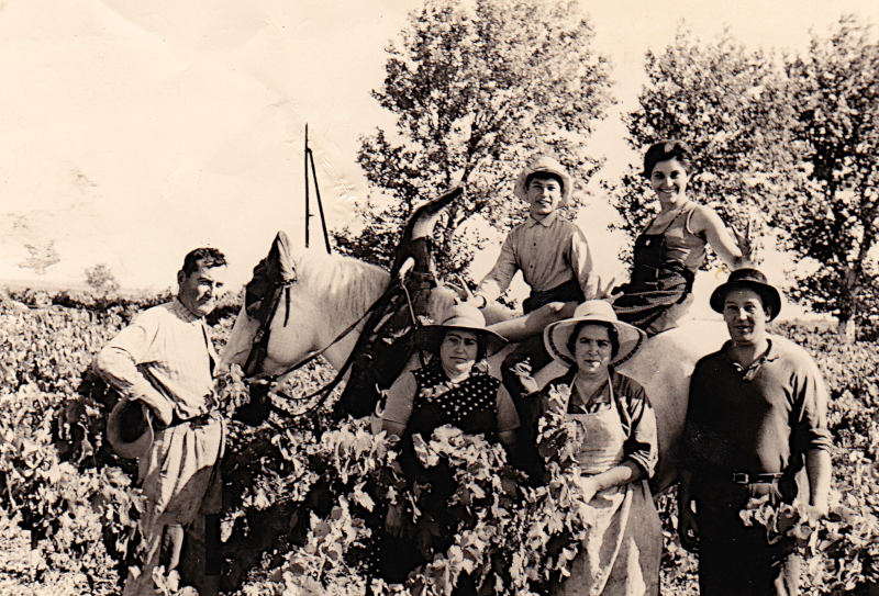 1967 : M. Guillermo, Mme Guillermo, Mme Garrigues, Nicole et Daniel Guillermo